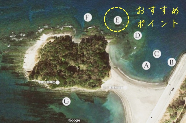 沖ノ島海水浴場シュノーケリングおすすめポイント