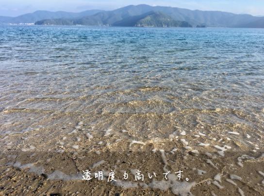 渡連ビーチ水質