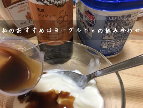 乳酸ジンジャーヨーグルト